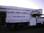 Sotil Tree Service